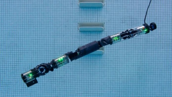 This latest snakebot from Carnegie Mellon can swim underwater