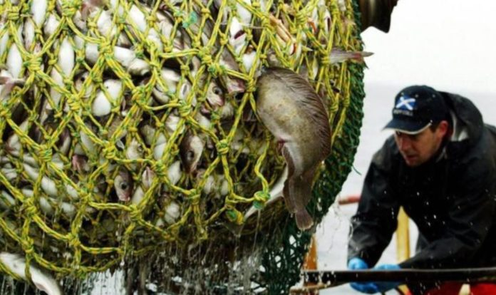 The UK and Norway are unable to reach a fisheries agreement