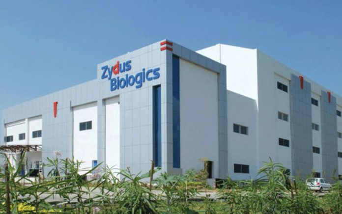 Zydus Cadila and TLC from Taiwan makes a deal to market the black anti-fungus drug in India